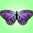Violet butterfly — Stock Vector