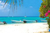 Tropical beach, Venezuela — Stock Photo