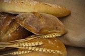 Composition of artisan bread — Stock Photo