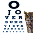 Letters owl eye doctor's office - Stock Photo