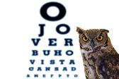 Letters owl eye doctor's office — Stock Photo