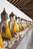 Buddha arranged in several rows along the wall — Stock Photo