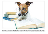 DOG LEARNING — Stock Photo