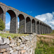 Ribblehead Viaduct — Stock Photo #6356261