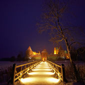 Trakai Island Castle in the night in winter. — Stock Photo