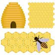 Honey set — Stock Vector