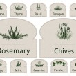 Labels Herbs paper spices - Image vectorielle