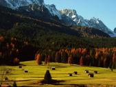 Alpine landscape with autumn barns — Stock Photo