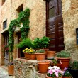Italian door with stairs and pots of flowers and cacti - Stock Photo