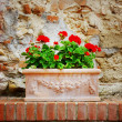 Vase of flowers on stone wall - Stock Photo