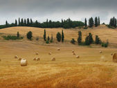 Tuscan hills with bales of hay — Stock Photo