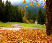 Autumnal Alpine landscape with white house — Stock Photo