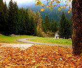 Autumnal Alpine landscape with white house — Stock Photo