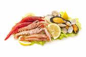 Frutti di mare — Foto Stock