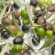 Olives — Stock Photo #6420409