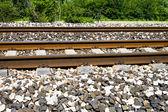 Rusted rail — Stock Photo