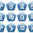 Zodiac blue pentagon icon — Stockvector #6514965