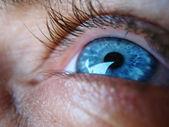 Blue eye close up shoot — Stock Photo