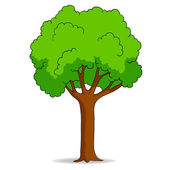 Cartoon tree isolated on white background — Stock Vector
