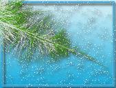 Winter fir — Stock Vector