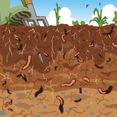 Soil and worms — Stock Vector