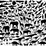 Animal silhouettes — Stock Vector
