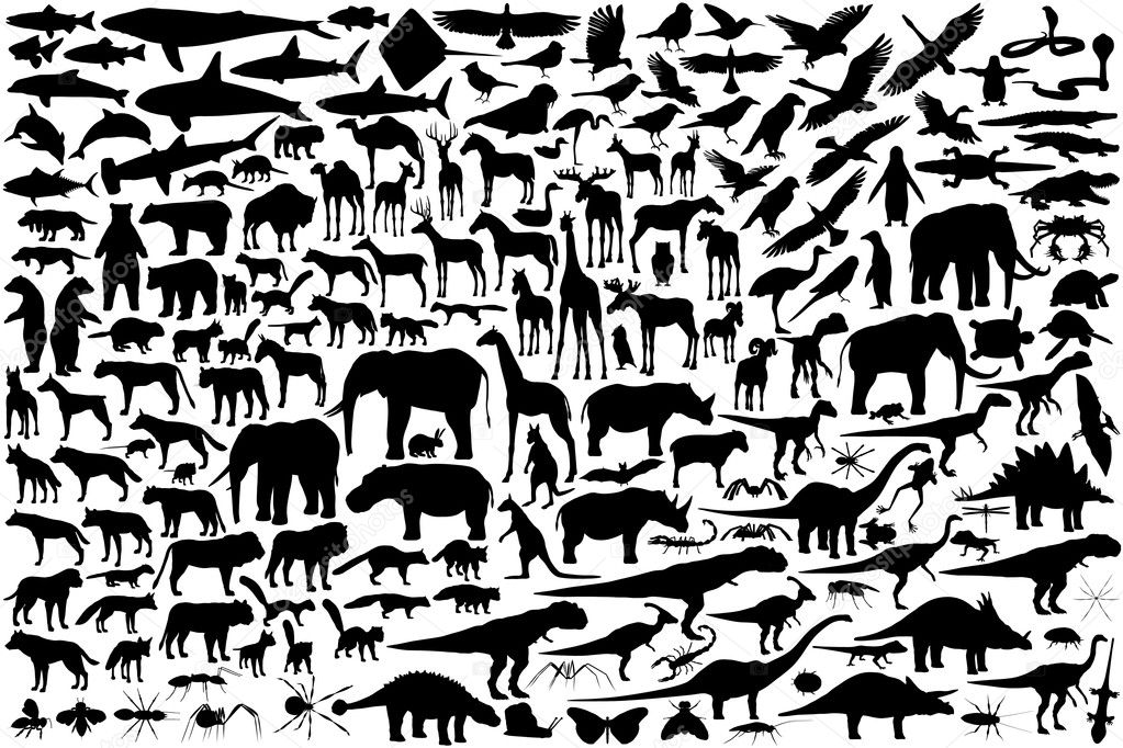 Diverse set of editable vector animal outlines  Stock Vector #6479640