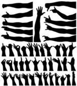 Hands and arms — Stock Vector