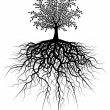 Royalty-Free Stock Vectorafbeeldingen: Root tree