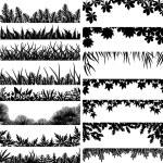 Plant borders — Stock Vector