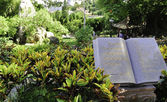 Book statue overlooking a garden in the park — Stock Photo