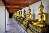 Golden Thai Buddhas — Stock Photo