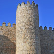 Tower of the wall of Avila — Stock Photo #6375582