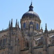Royalty-Free Stock Photo: Salamanca\'s Cathedral