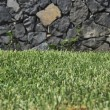 Stock Photo: Cutted turf
