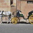 Horse carriage - Stock Photo