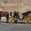 Horse carriage — Stock Photo #6456377