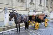 Horse carriage 3 — Stock Photo
