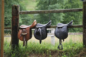 Three saddles — Stock Photo
