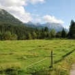 Alp pasture — Stock Photo