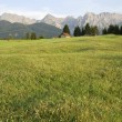 Mountain pasture — Foto de stock #6393131