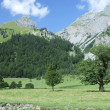 Alps in Tirol — Stock Photo