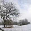 Winter in Bavaria — Stock Photo