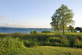 Lake Bodensee — Stock Photo