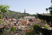 By i Schwarzwald — Stockfoto