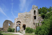 Castle ruin — Stock Photo