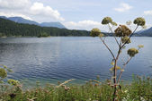 Lake Eibsee — Stock Photo