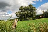 Bavarian landscape — Stock Photo