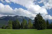 Golf green in the alps. — Stock Photo