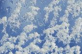 Snow crystals — Stock Photo